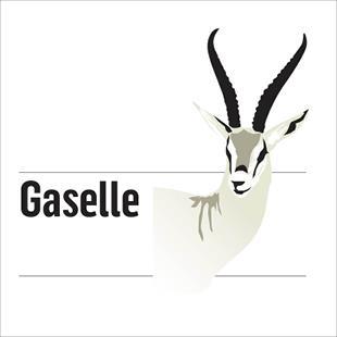 https://insenti.no/wp-content/uploads/2019/03/Gaselle-logo.jpeg